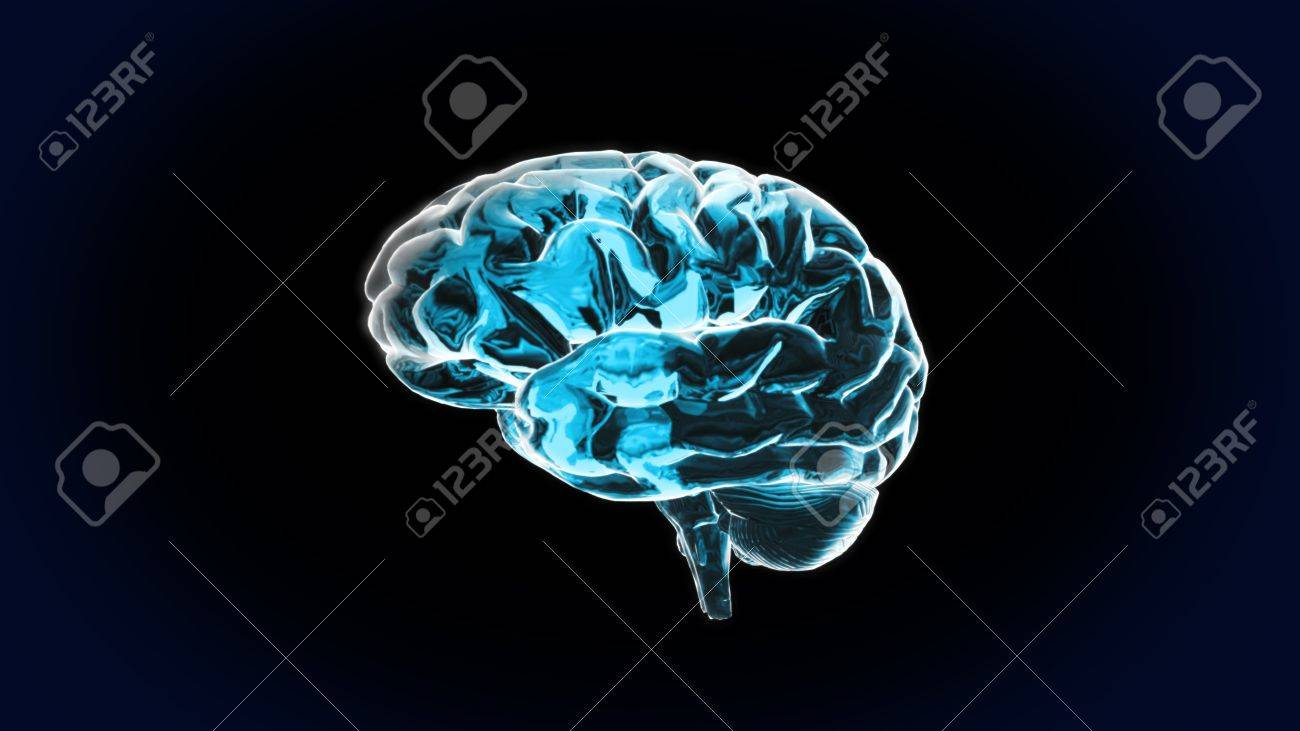 Pure Crystal Brain is the best way for any medical theme.IQ concept, the idea of CPU processing . - 10277955