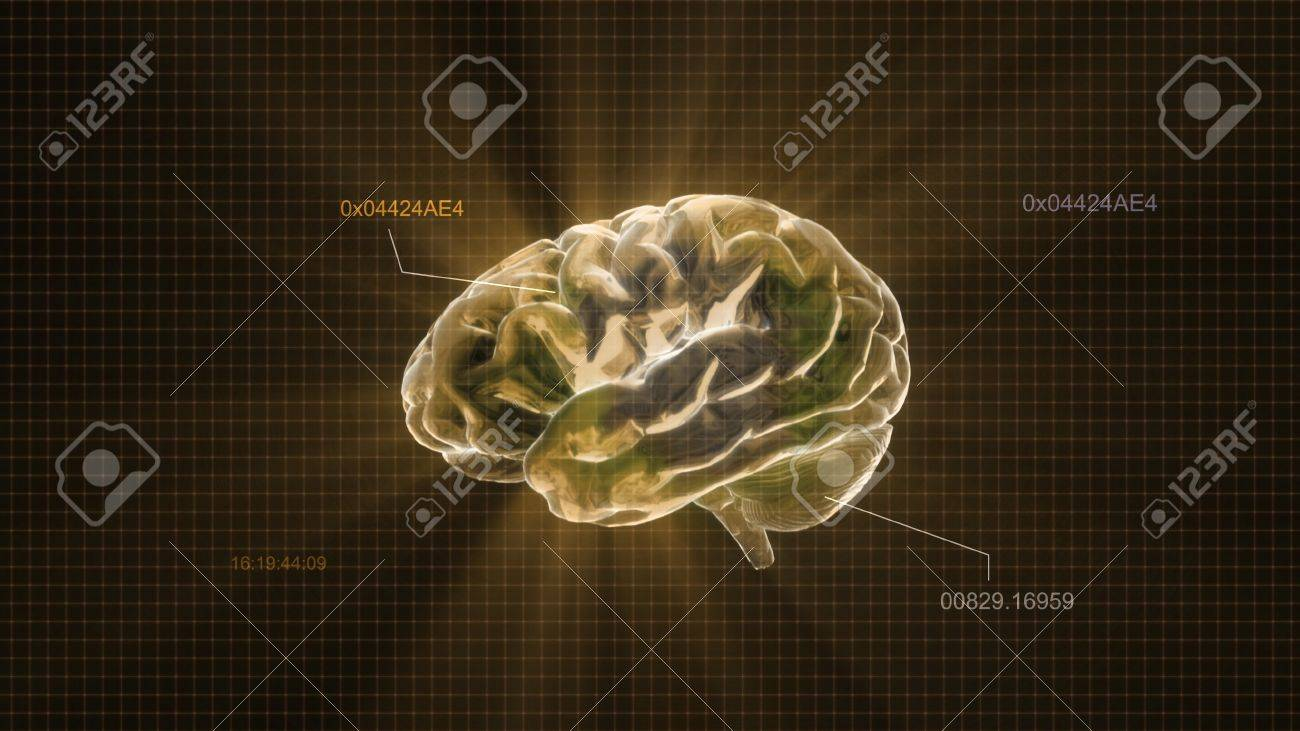 the crystal brain render for medical and biology concept - 12403568