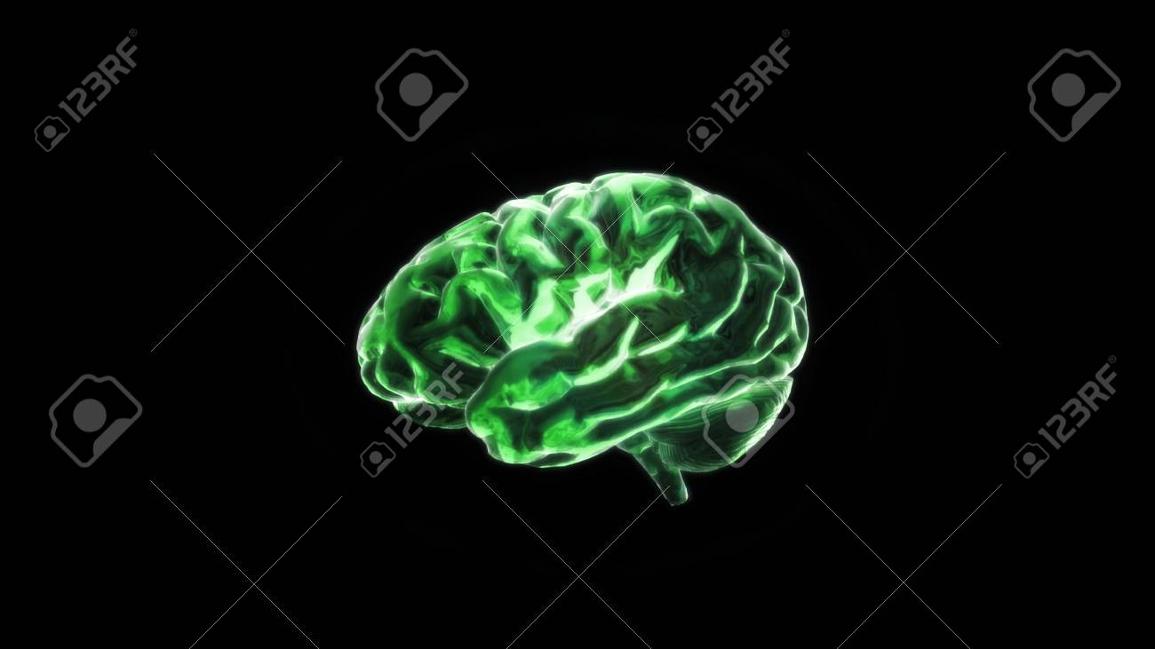 the crystal brain render for medical and biology concept Stock Photo - 12403223