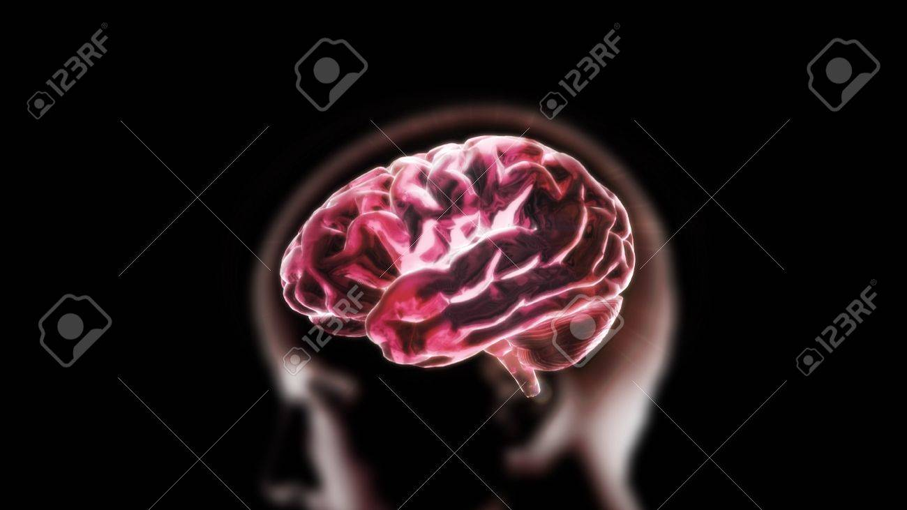 the crystal brain render for medical and biology concept Stock Photo - 12403229