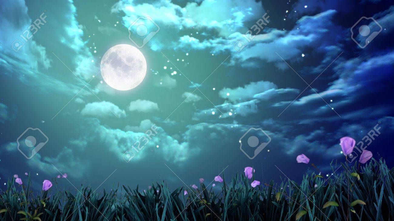 the beauty moon in the night sky Stock Photo - 12403566