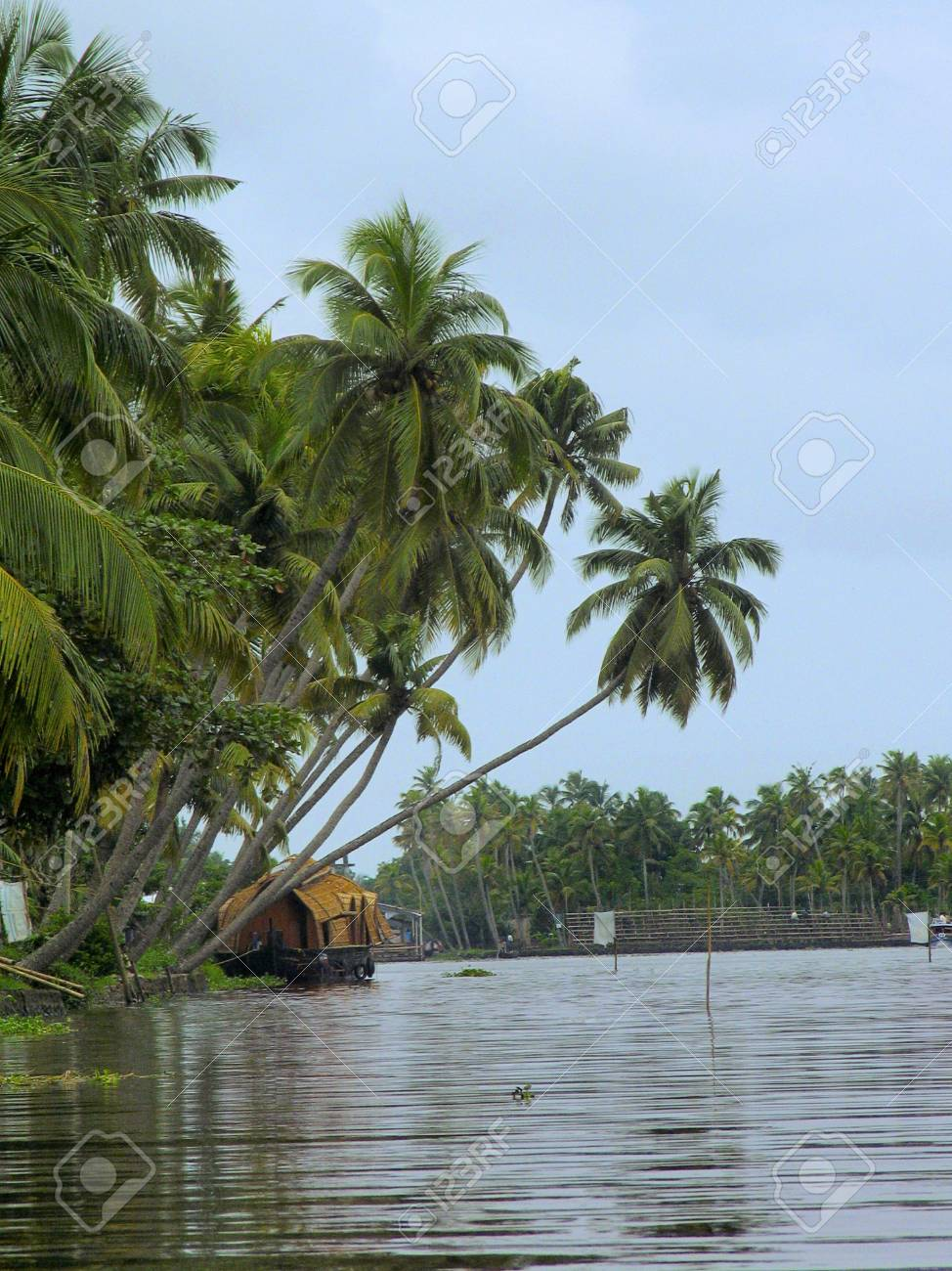 Landscape And Backwaters Of Kerala India Stock Photo Picture And Royalty Free Image Image 93273110
