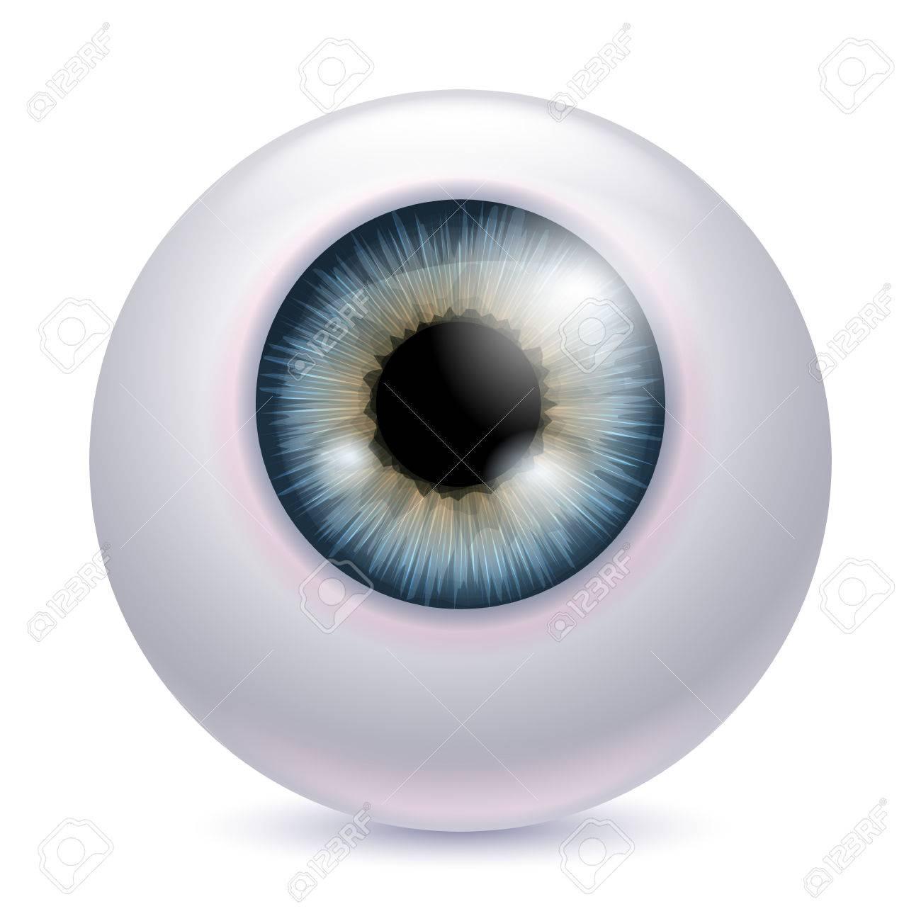 Menschliche Augapfel Iris Pupille Auf Weißem Hintergrund - Graue ...