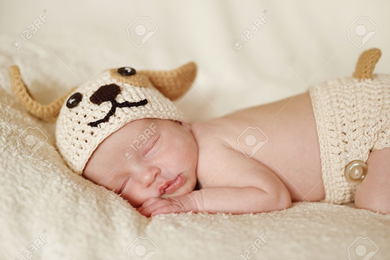 newborn wearing funny knitted costume of dog Stock Photo - 18530966 & Newborn Wearing Funny Knitted Costume Of Dog Stock Photo Picture ...