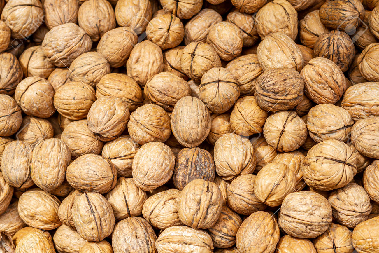 Walnuts background closeup, pile of unshelled nuts - 161437501