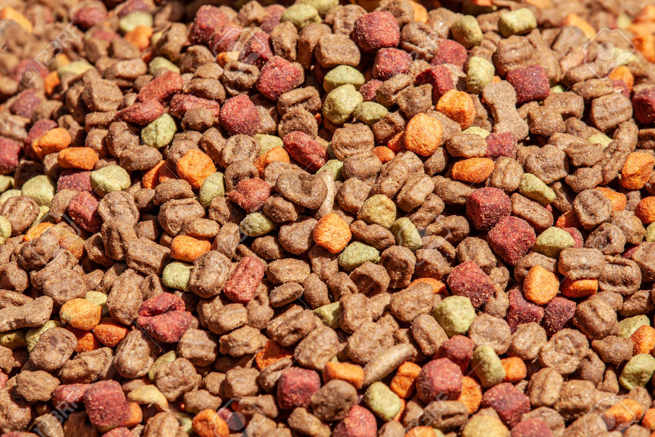 Close up of cat dried colorful food background - 162319069