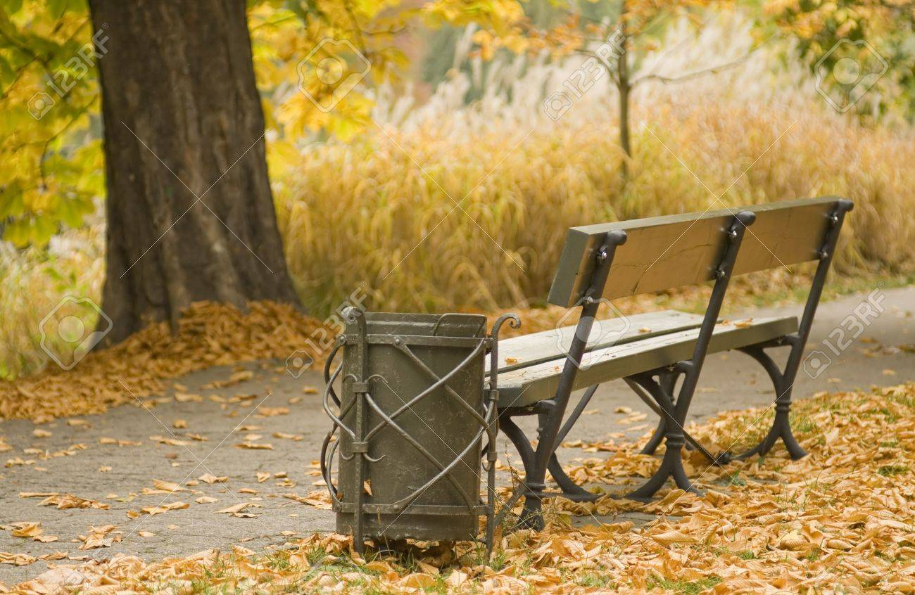 Autumn with golden Leaves around a Litter Basket and Bench. Stock Photo - 3800200