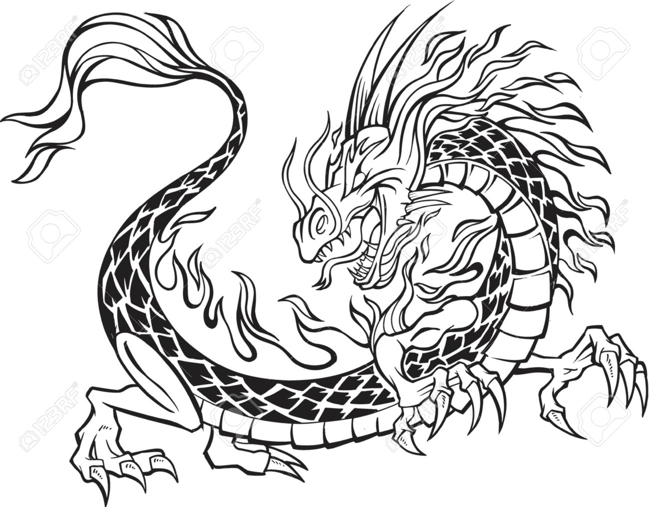 Dragon Vector Illustration Stock Vector - 892648