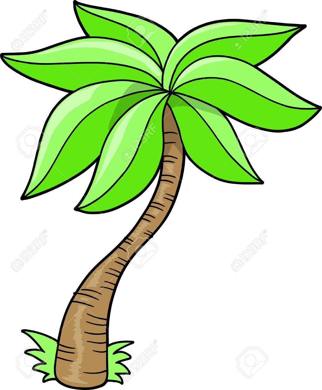 Cartoon Palm Tree Cartoon Palm Tree Palm Tree