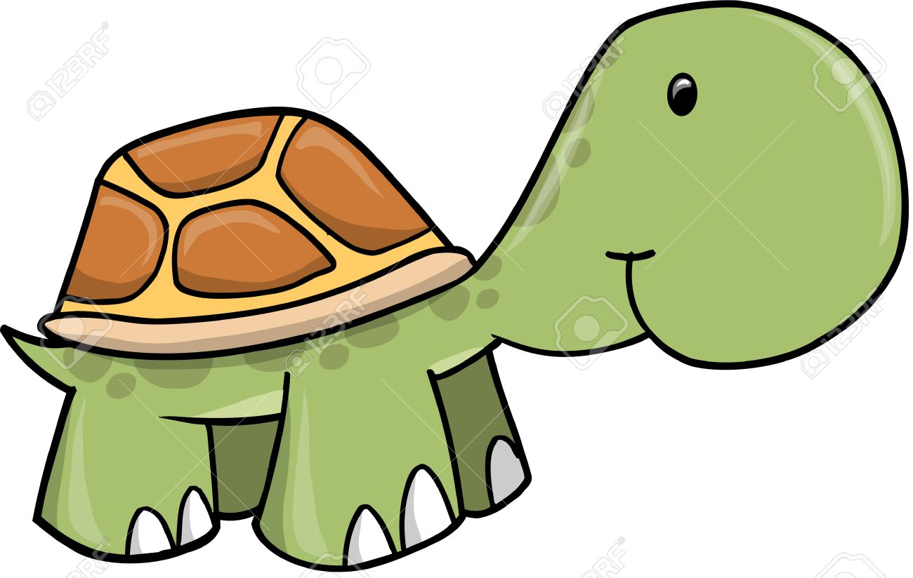 Baby Turtle Illustration - 7108831