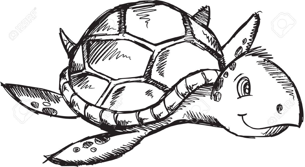 Cute Sketch Doodle Drawing Sea Turtle Art Illustration - 11183405