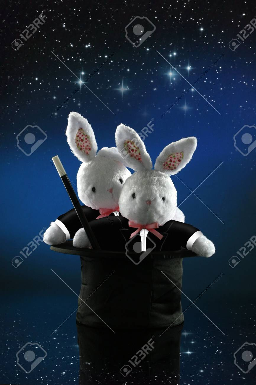 The bunny magicians Stock Photo - 4563569