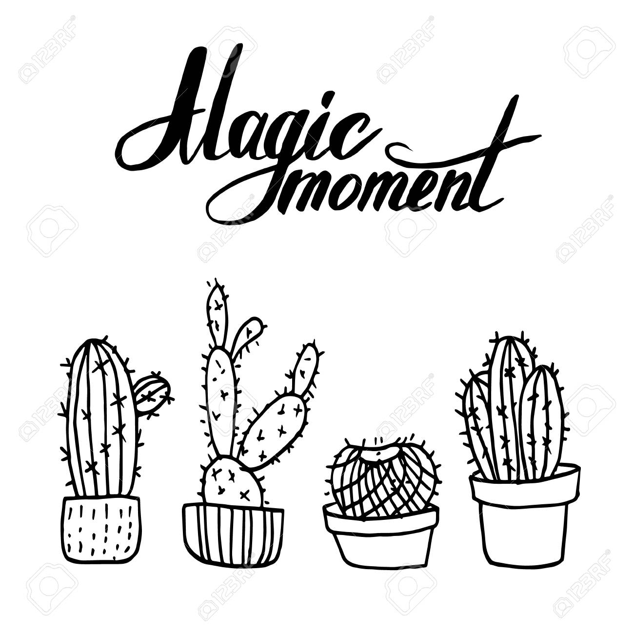 vector hand drawn illustration artwork with cactus and magic