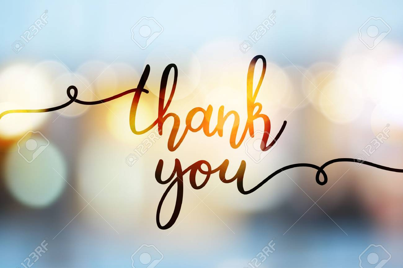 thank you, vector lettering on blurred lights background - 88104722