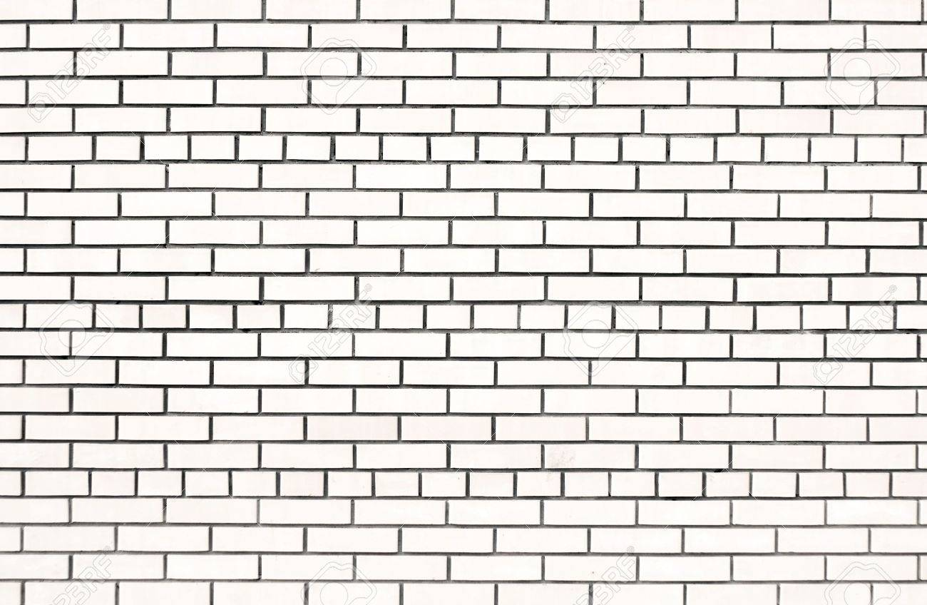 white brick wall Stock Photo - 3275940
