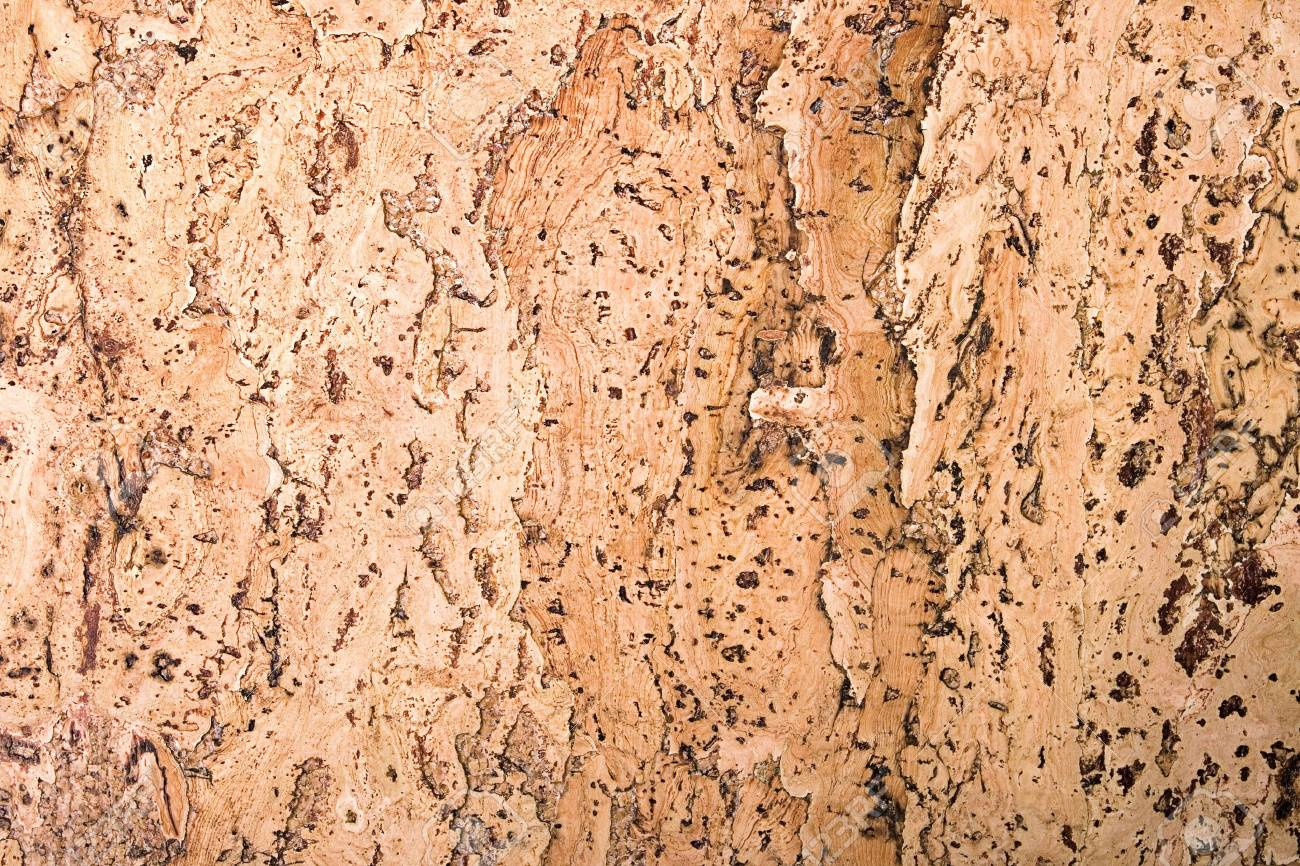 texture of the cork material Stock Photo - 6639584