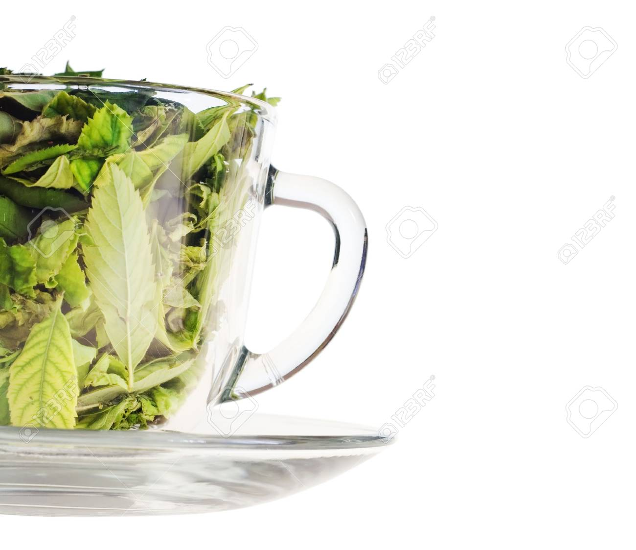 Leaves in cup. Stock Photo - 6639514