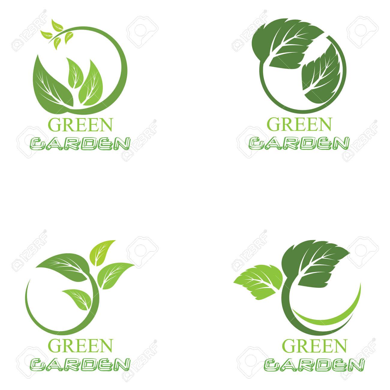 Leaf icon Vector Illustration design Logo template - 169547061