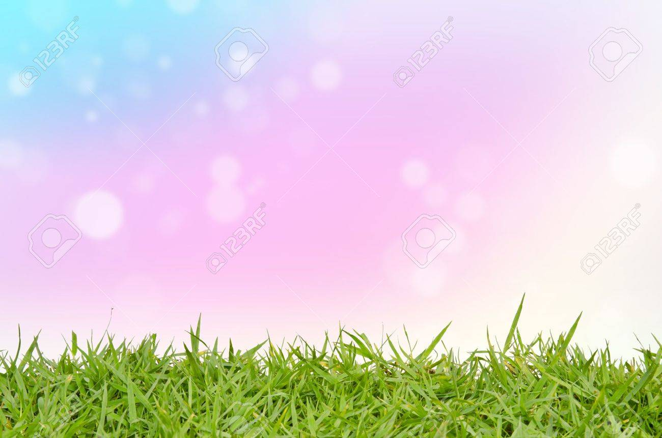 Green grass and abstract background blurring Stock Photo - 15248663