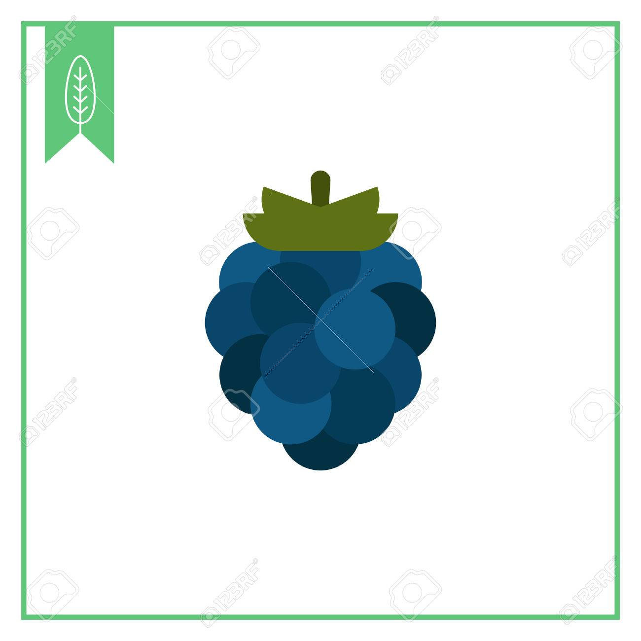 Vector Icon Of Single Ripe Fresh Blackberry Royalty Free Cliparts