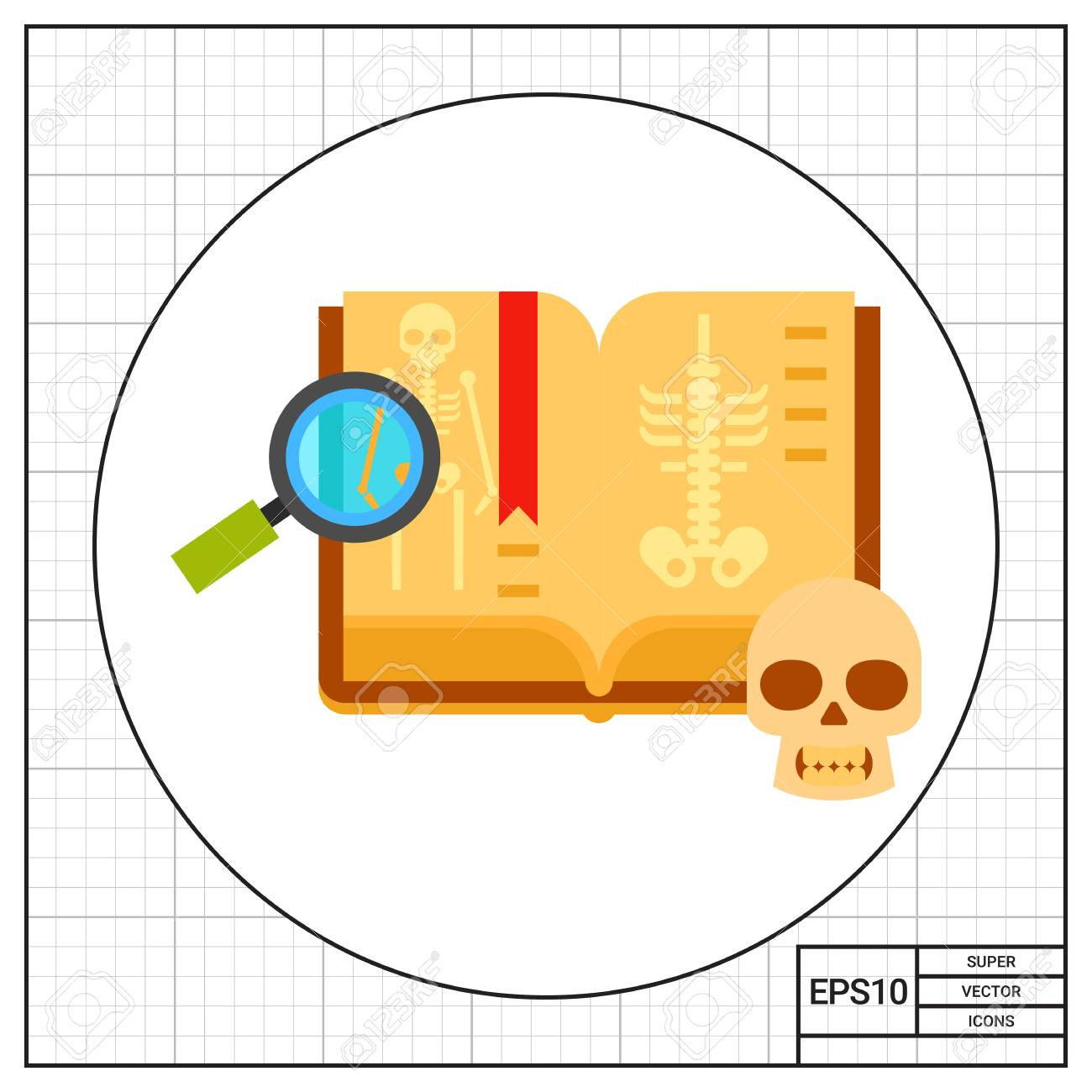 Anatomie Buch. Medizin, Menschlicher Schädel, Lupe, Skelett. Medizin ...