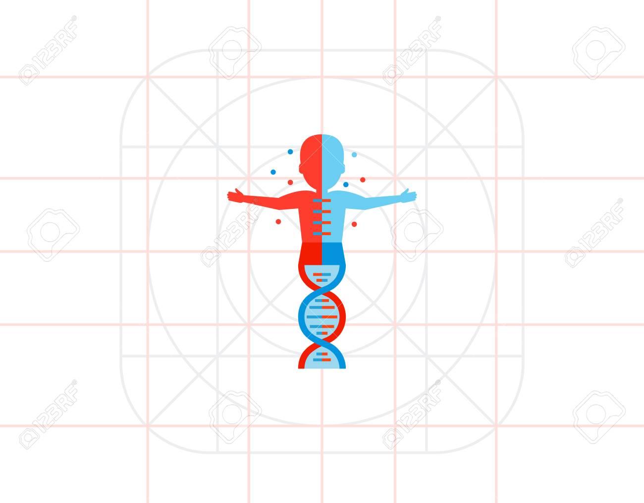 Silueta Humana Con La Molécula De Adn Anatomía La Escuela La Estructura De La Molécula Concepto De Anatomía Puede Ser Utilizado Para Temas Como