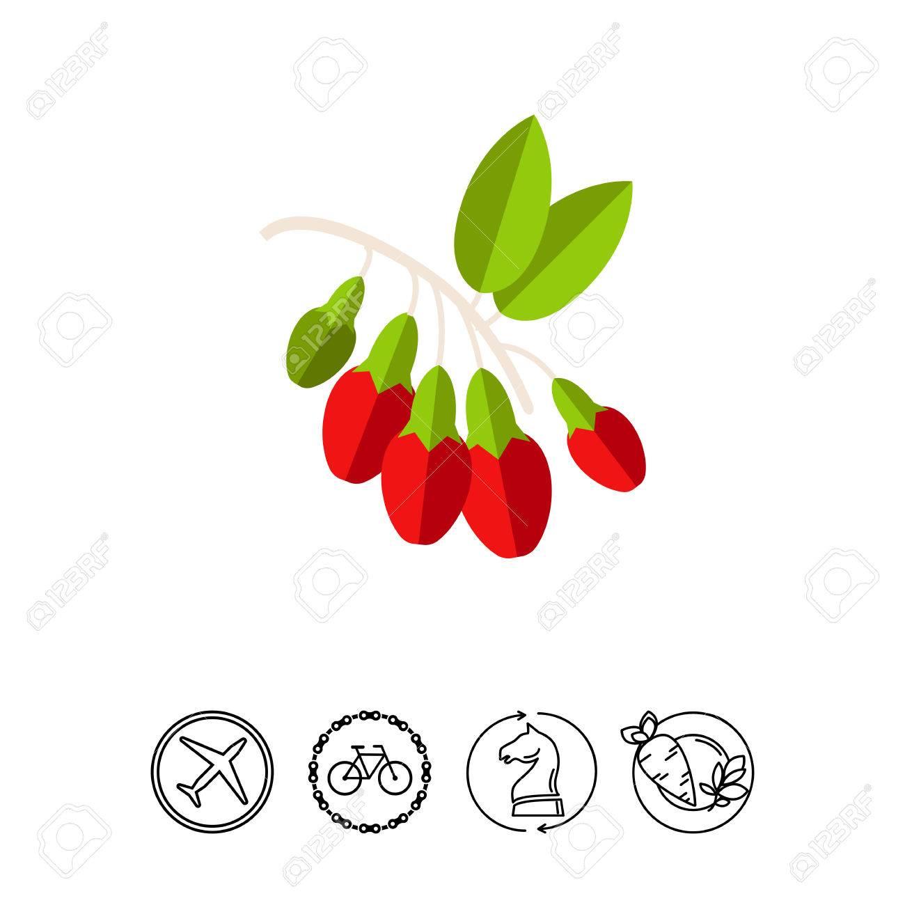 Bunch Of Goji Berries Plant Healthy Nutrition Goji Berries
