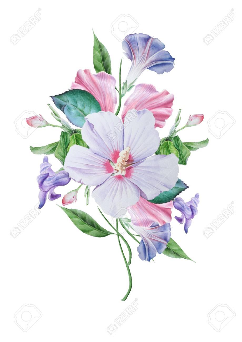 花の水彩画の花束ハイビスカスペチュニア イラスト手描き の