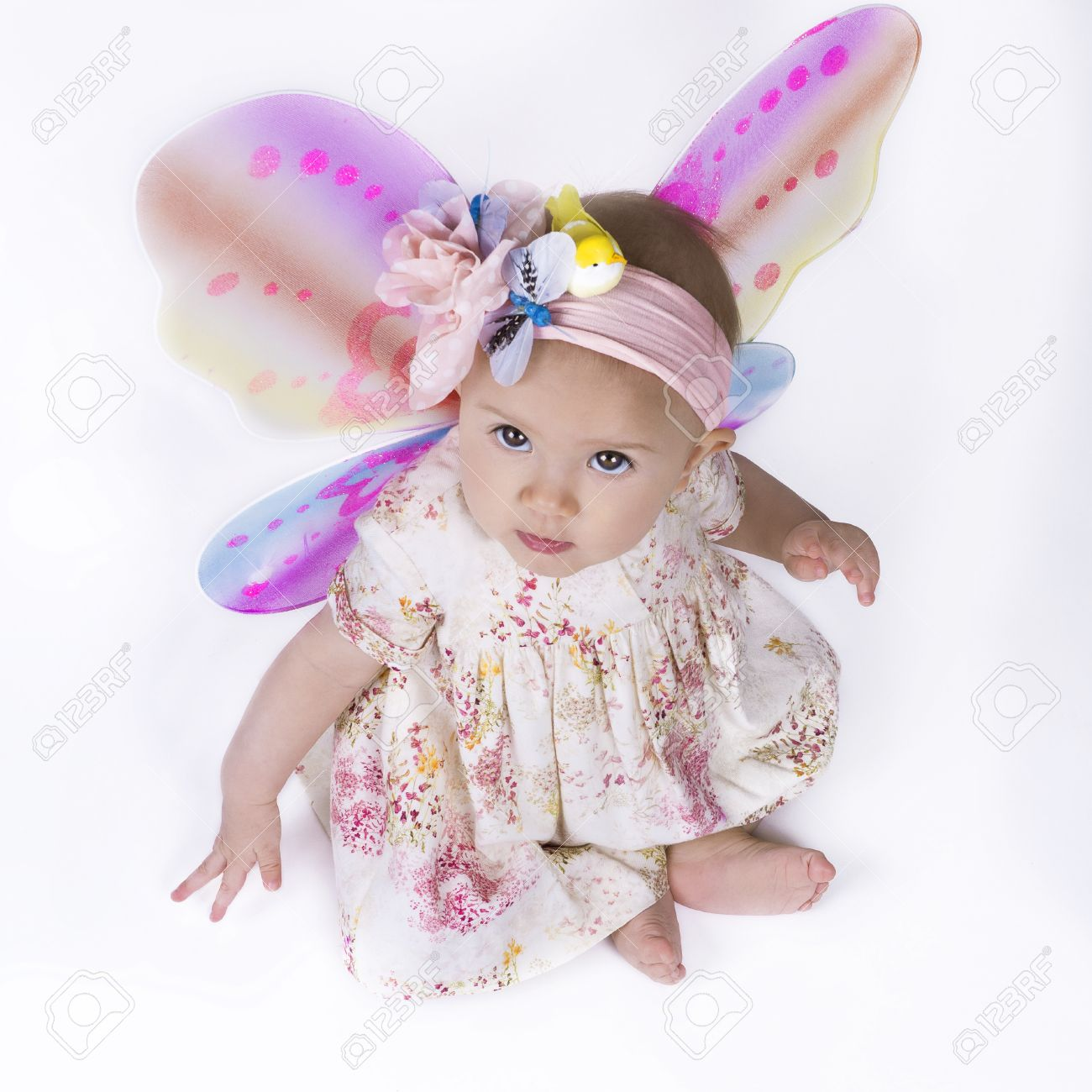 cute baby girl dressed in a flower dress and butterfly wings.. stock