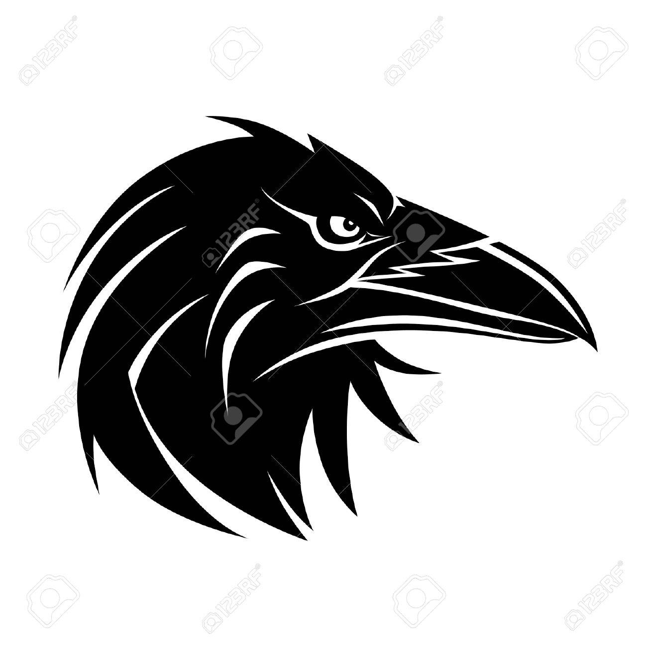 Raven portrait - 34493090