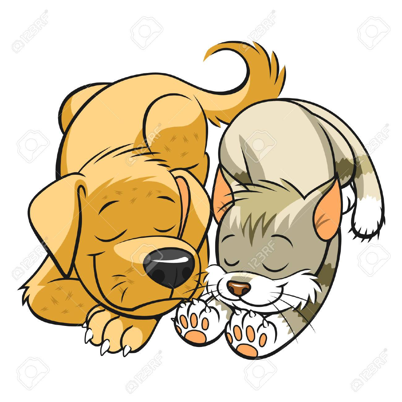 Pets sleeps - 35146928