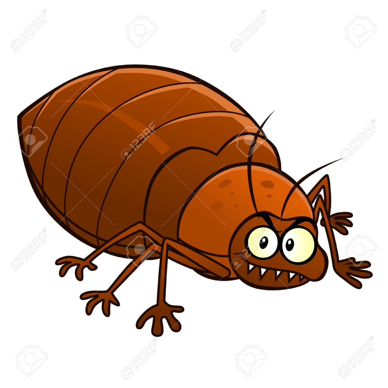 Cartoon smiling bedbug - 37696152