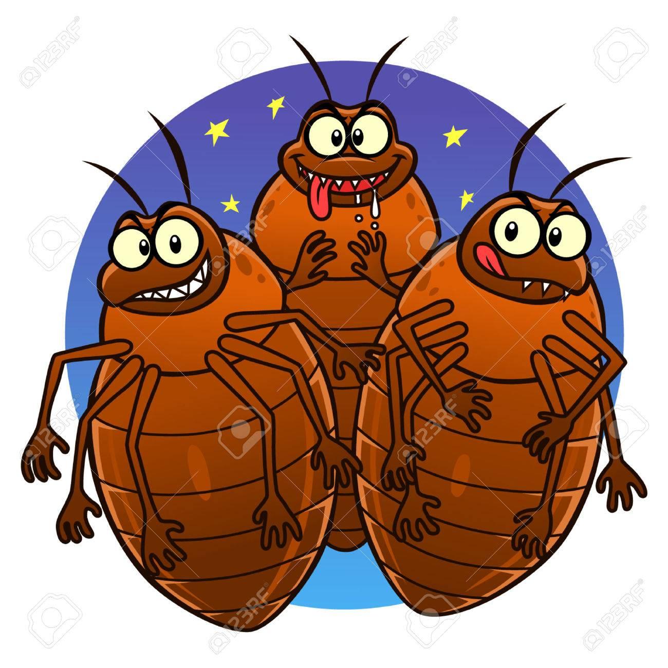 Bedbugs - 39342006