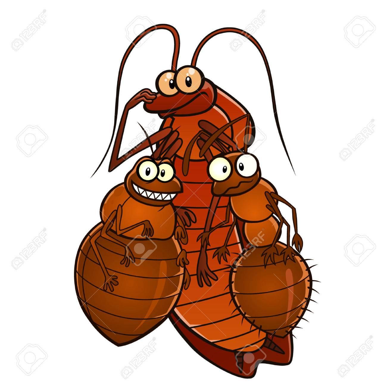 Domestic pests - 40825443