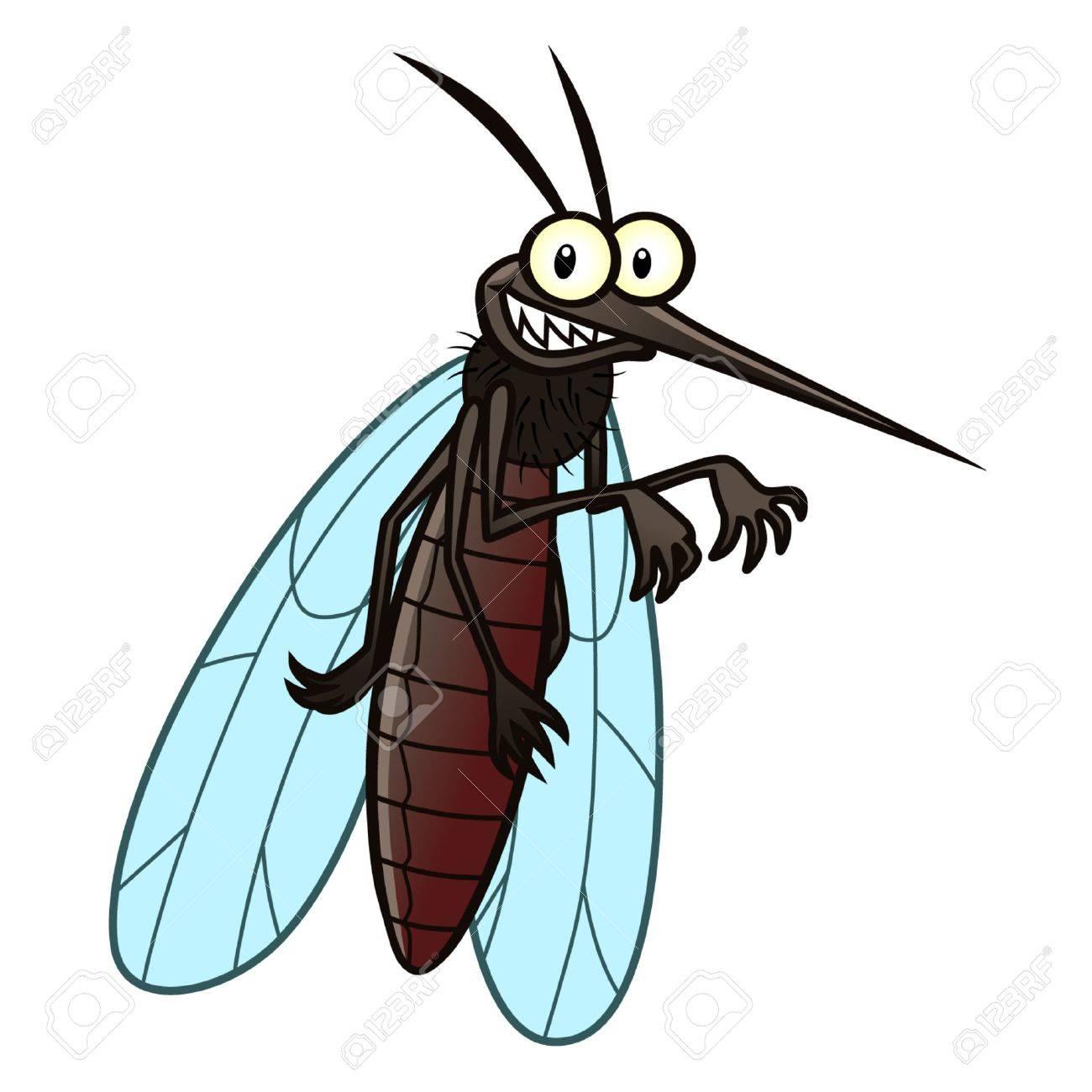 mosquito - 40825445