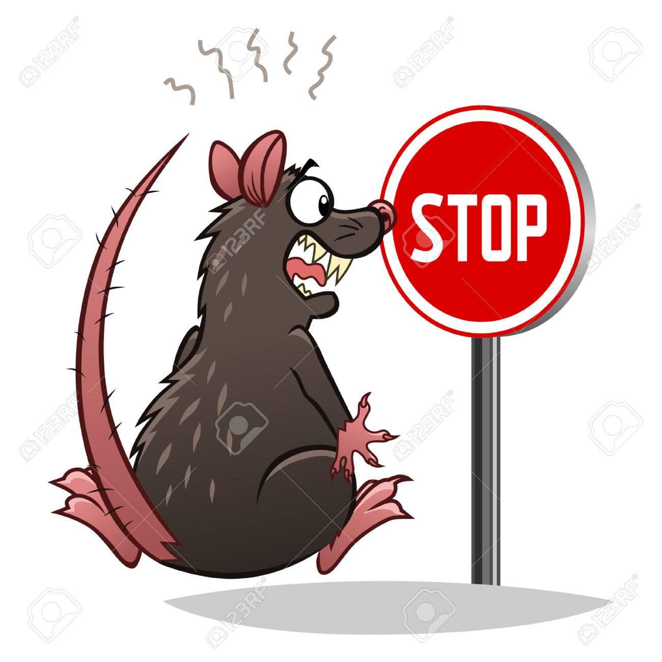 Stop rats - 45644552