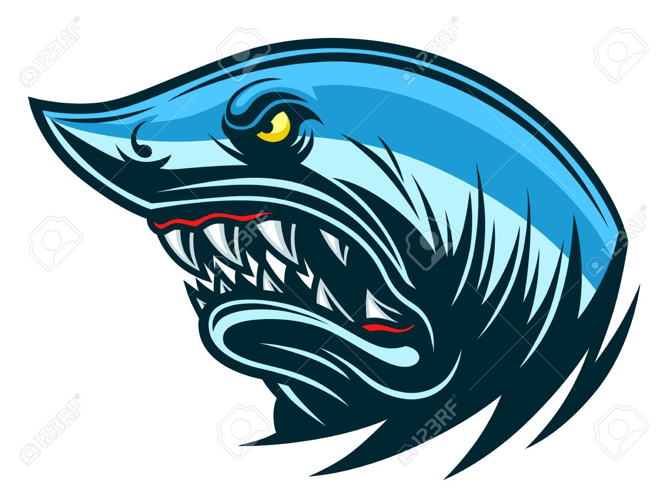 angry shark head royalty free cliparts vectors and stock rh 123rf com shark vector free shark victory press blue/grey