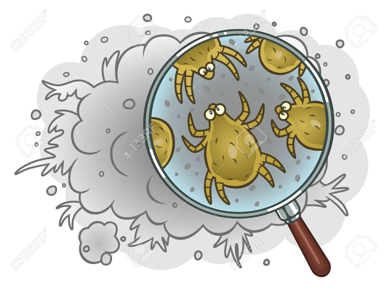 Dust mites in dust - 93873287