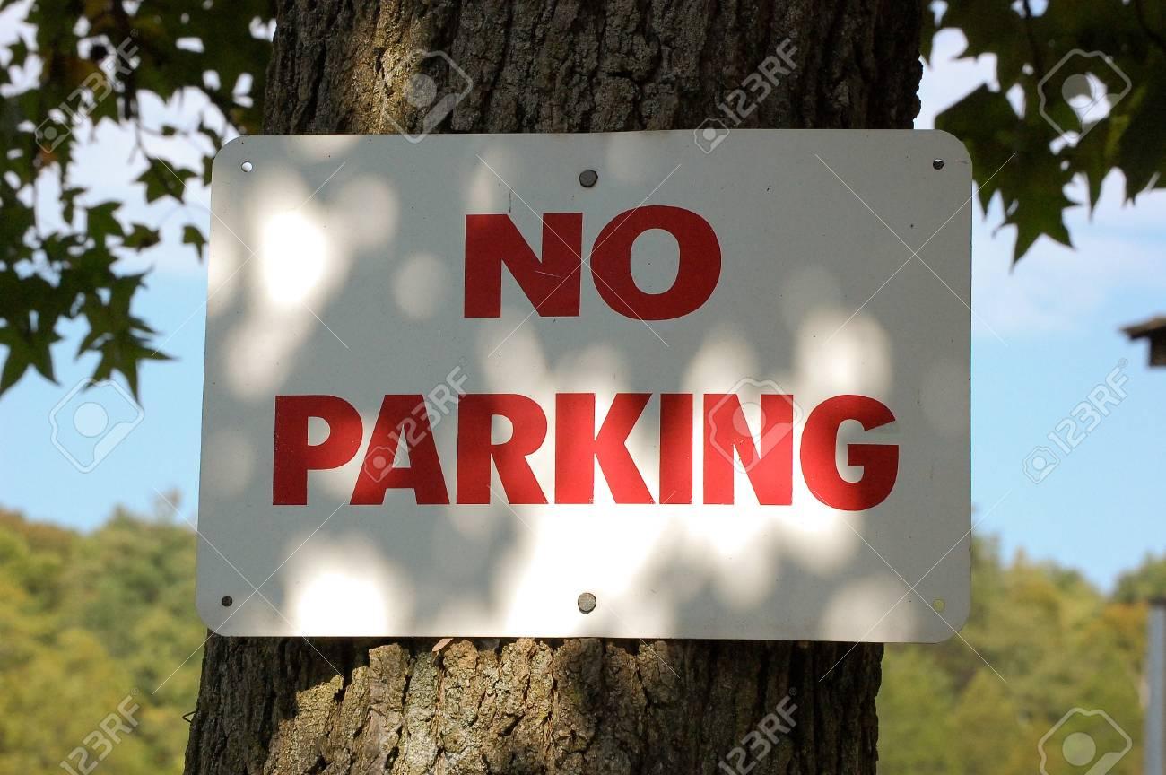 No Parking Stock Photo - 10916448