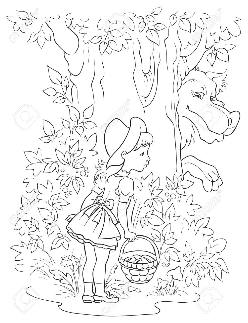 Little Red Riding Hood and Wolf. Colouring page - 34056161
