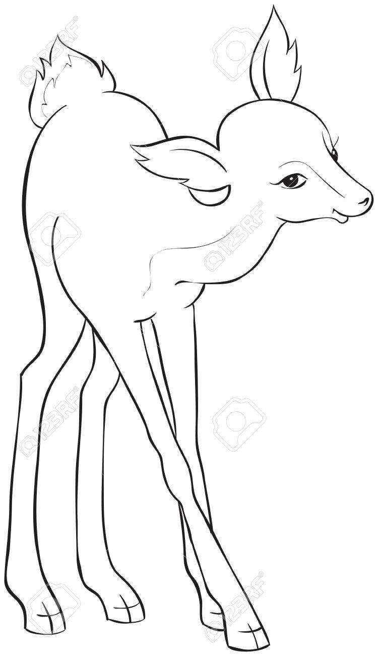 Ciervos Hermoso Historieta Dibujo Para Colorear También Disponible