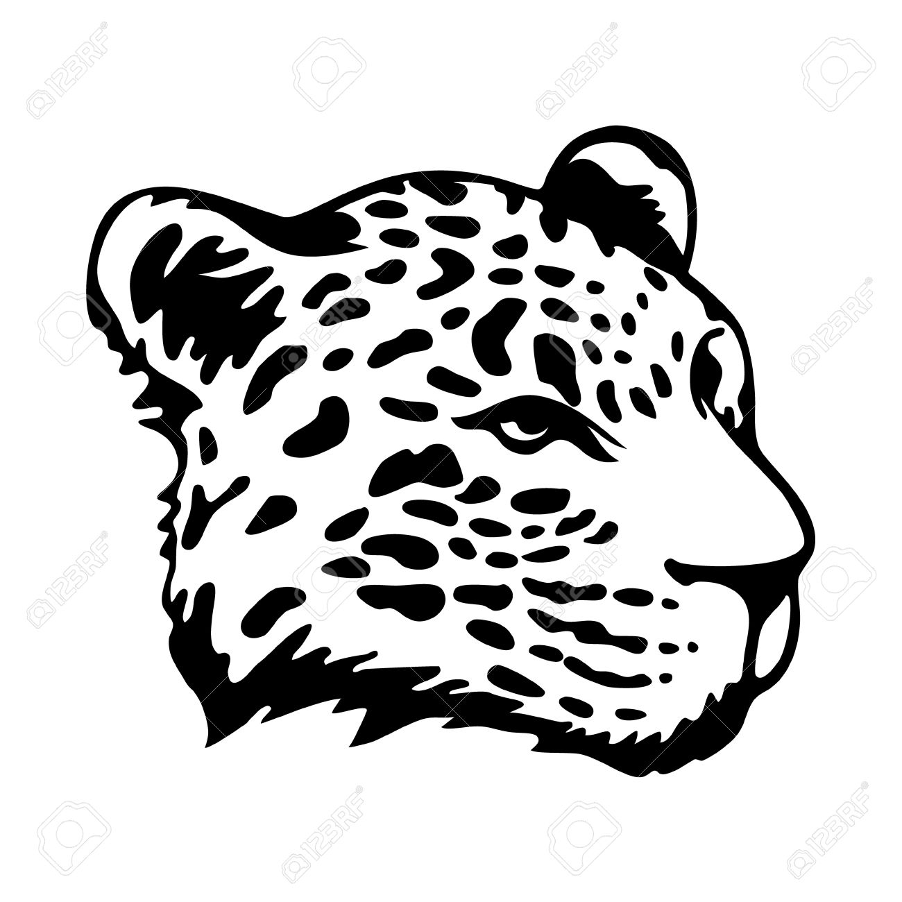 Stylize jaguars head isolated on white background stock vector 30396125