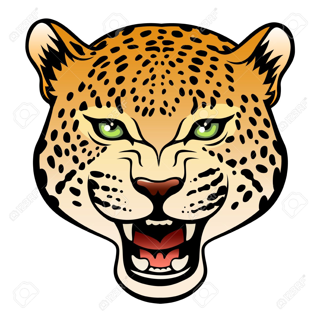 head of roaring leopard isolated on white background royalty free rh 123rf com snow leopard clipart leopard clip art images