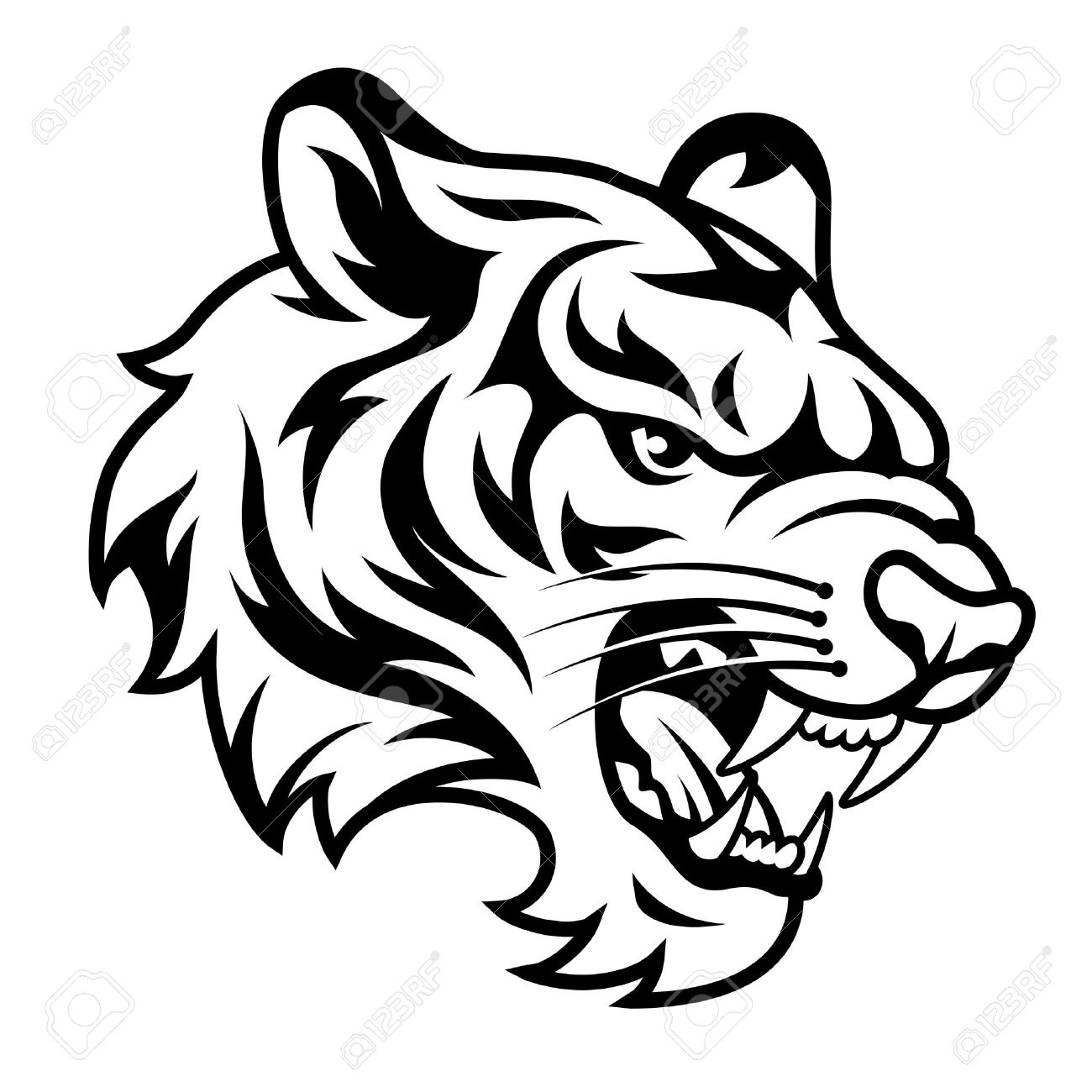 7676eb35a Roaring tiger's head isolated on white. Black and white vector illustration Stock  Vector - 31493228
