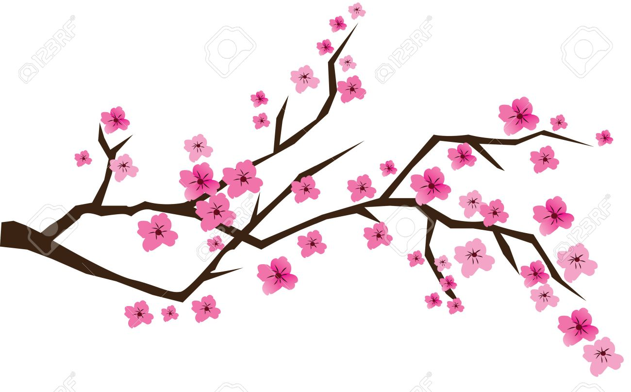 cherry brunch in blossom Stock Vector - 7275888