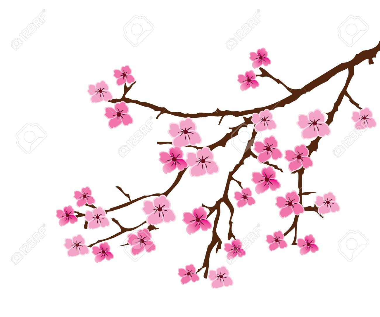vector floral branch royalty free cliparts vectors and stock rh 123rf com cherry blossom vector art cherry blossom vector art