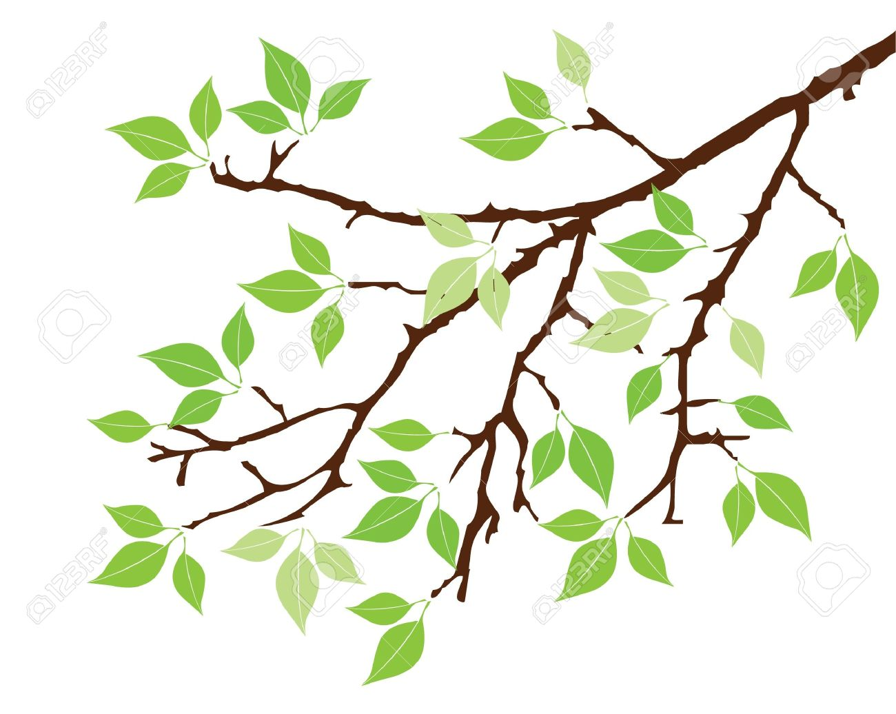 vector tree branch with leaves royalty free cliparts vectors and rh 123rf com vector tree branch font free vector tree branch