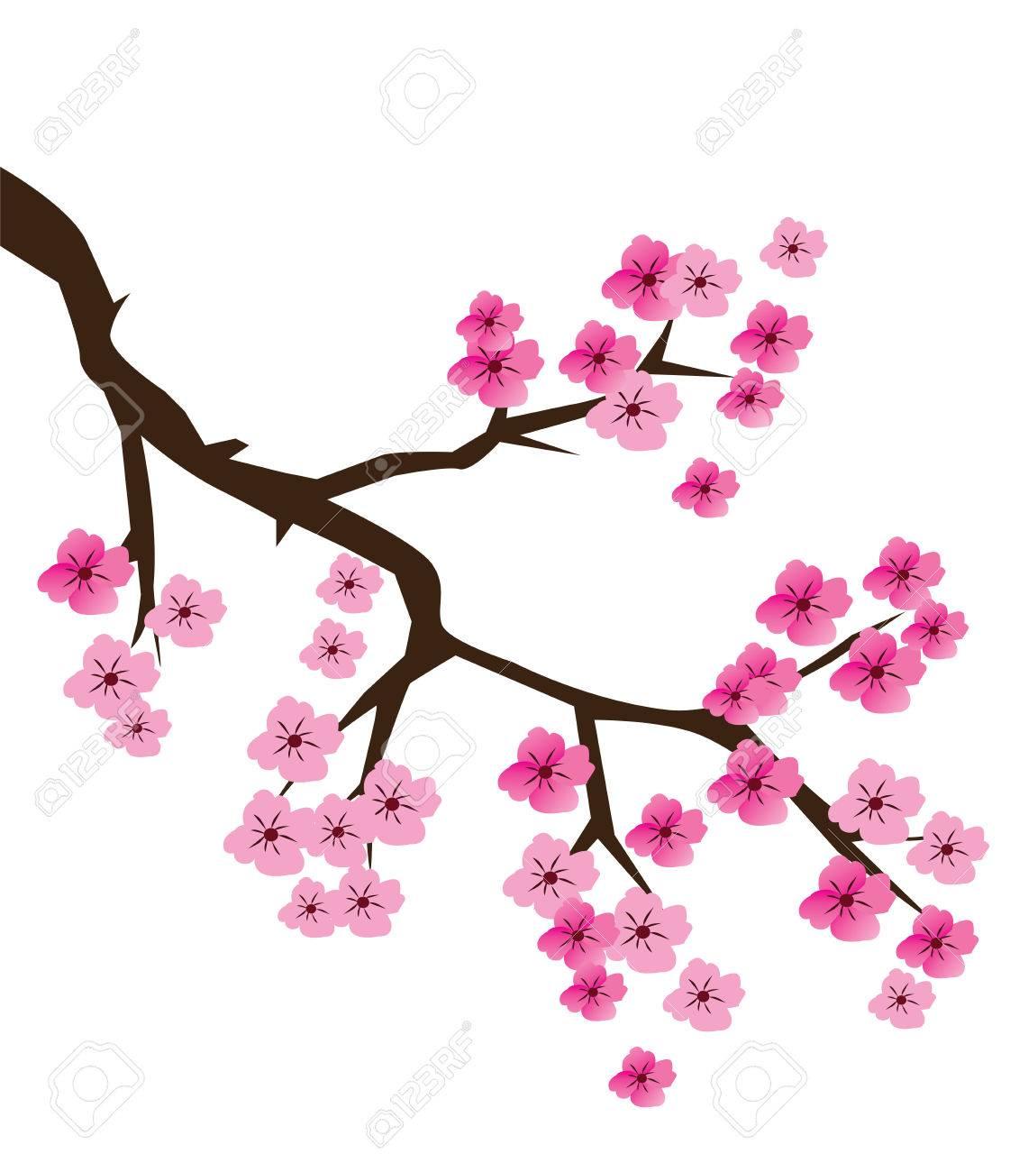 Ilustración Vectorial De Una Rama De La Flor De Cerezo Ilustraciones