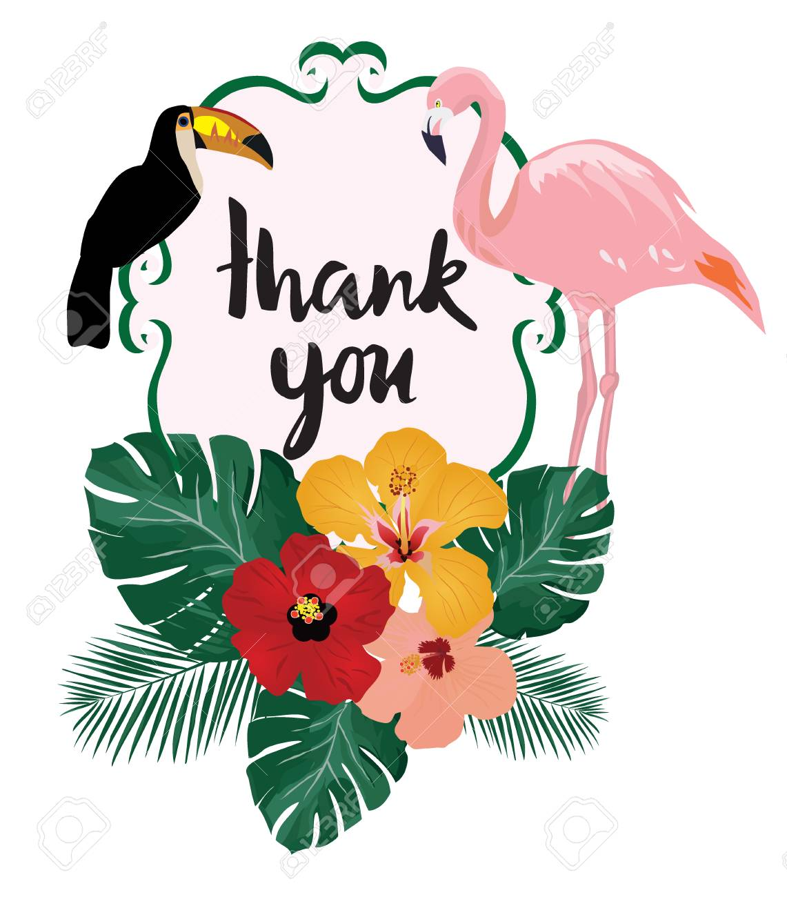Vector Illustration Of Thank You Card Note With Birds Flamingo