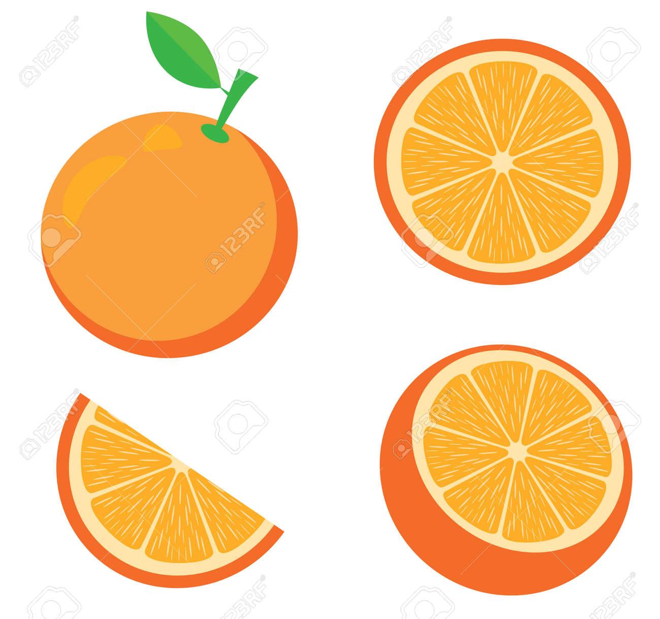 vector illustration of an orange. Fruits, slices, oranges. Fresh fruit background isolated on white. - 146033124